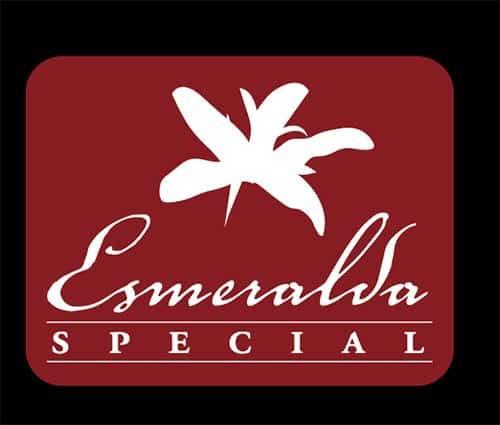 Geisha Esmeralda